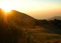 Артековская поляна в первых лучах солнца