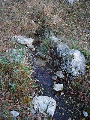 Источник на поляне Барлакош