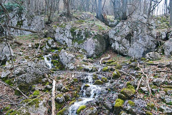 Родник у водопада Весенний