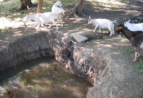 Яма с водой у родника Эки-Таш-Чокрак