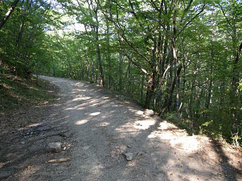 Дорога к Кокия-Кале