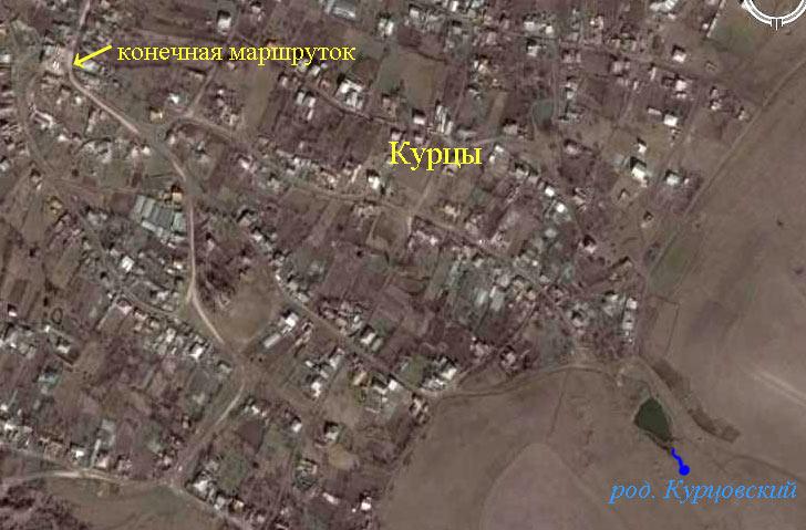 Фото из космоса фрагмента села Курцы