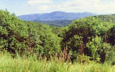 Гора Черная и Бабуган