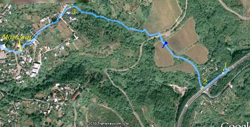 Фото из космоса первого участка маршрута троллейбусная трасса - село Запрудное